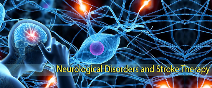 Neurological Disorders and Stroke Therapy